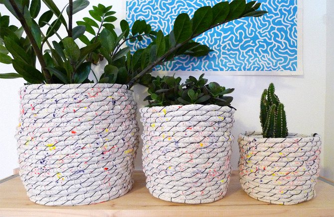 Basket Weaving Using Vines : Plant cozy new friends